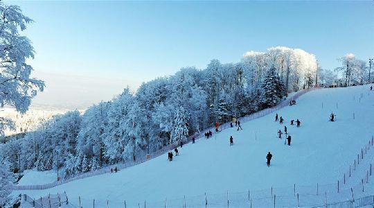 Основные горнолыжные курорты страны сконцентрированы неподалёку от её столицы