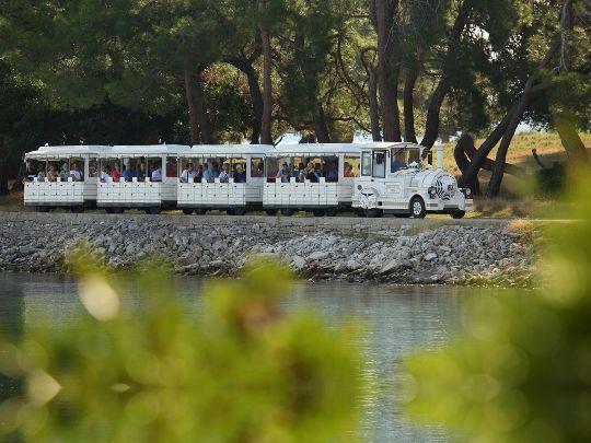 Экскурсия по сафари-парку на экскурсионных вагончиках